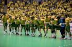 Seleção Brasileira Masculina de Handebol (Cinara Piccolo)