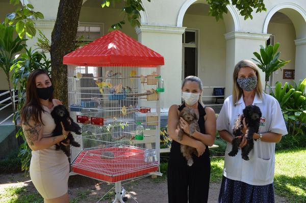 Animais de estimação farão companhia para os moradores