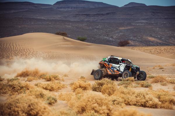 Trecho com muitas ervas de camelo, típica planta do deserto (@mchphotocz)