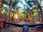 Plantação de bananas (Divulgação / Brasil Ride)