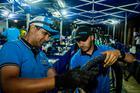 Mecânicos trabalhando ao anoitecer (Ney Evangelista / Brasil Ride)