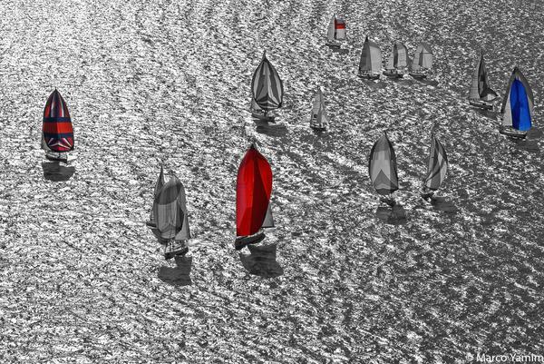Veleiros durante regata em Ilhabela
