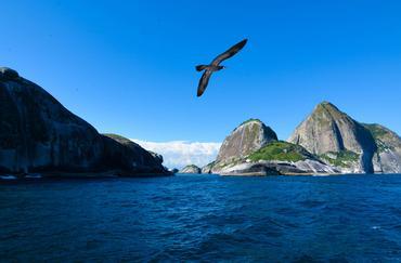 Importante santuário ambiental marinho