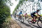 Road Brasil Ride em Pardinho (Wladimir Togumi/FestivalBrasil Ride)